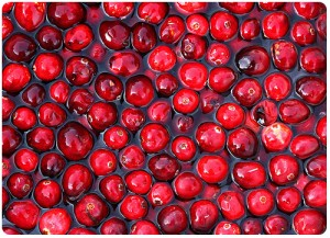 """""""cranberries"""" by Muffet"""