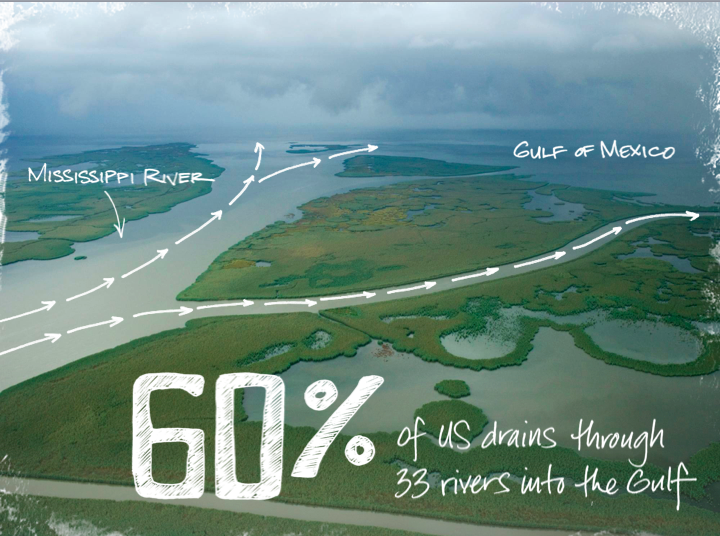 Gulf of Mexico stat slide