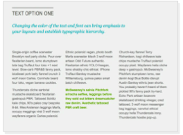 example of text standing out on presentation slide