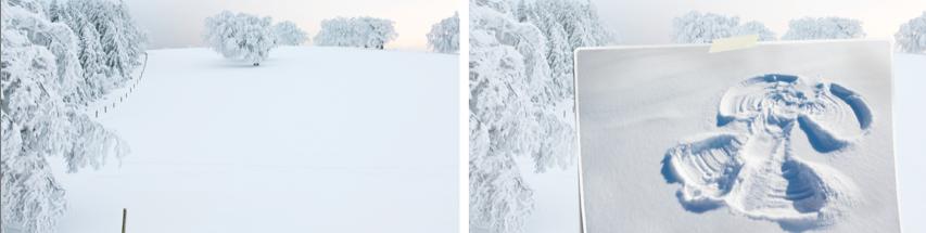snow field and snow angel